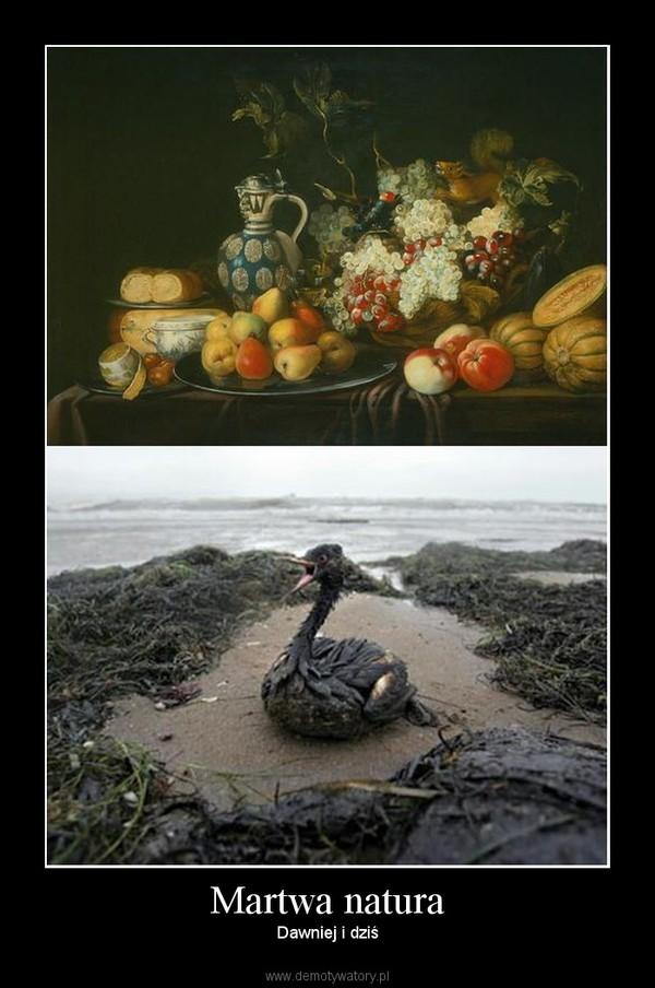 Martwa natura – Dawniej i dziś