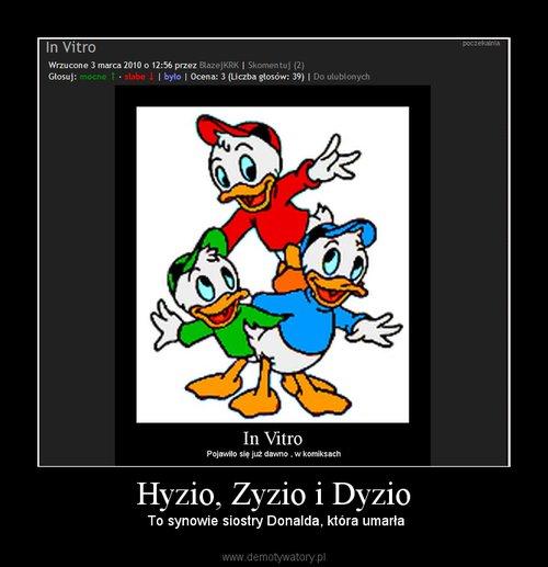 Hyzio, Zyzio i Dyzio