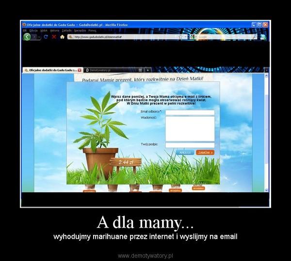 A dla mamy... – wyhodujmy marihuane przez internet i wyslijmy na email