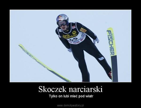 Skoczek narciarski –  Tylko on lubi mieć pod wiatr