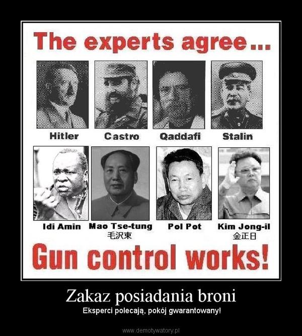 Zakaz posiadania broni –  Eksperci polecają, pokój gwarantowany!