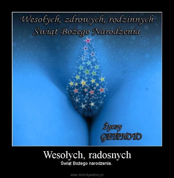 Wesołych, radosnych – Świąt Bożego narodzenia.