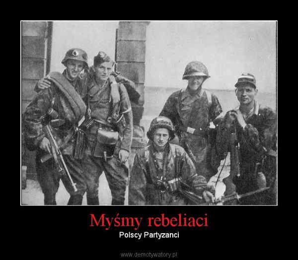 Myśmy rebeliaci – Polscy Partyzanci