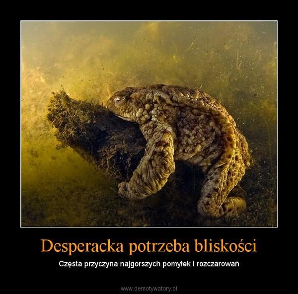 Desperacka potrzeba bliskości – Częsta przyczyna najgorszych pomyłek i rozczarowań