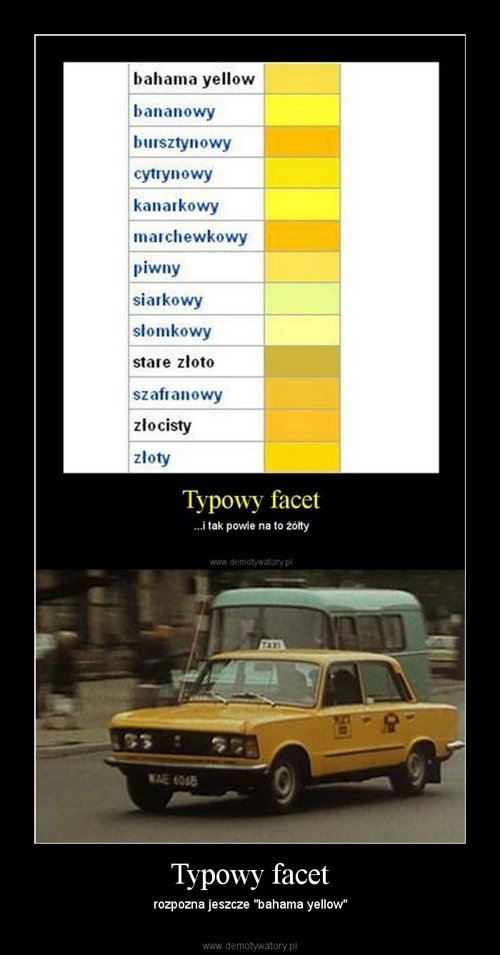 Typowy facet