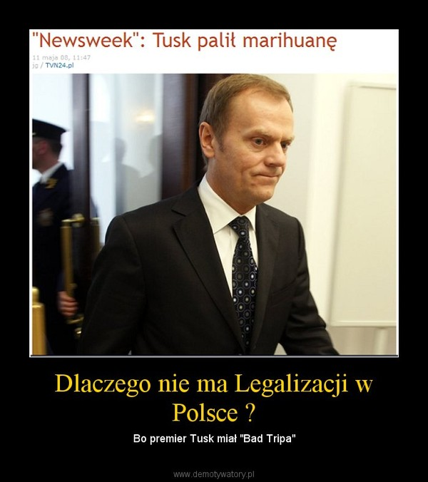 """Dlaczego nie ma Legalizacji w Polsce ? – Bo premier Tusk miał """"Bad Tripa"""""""