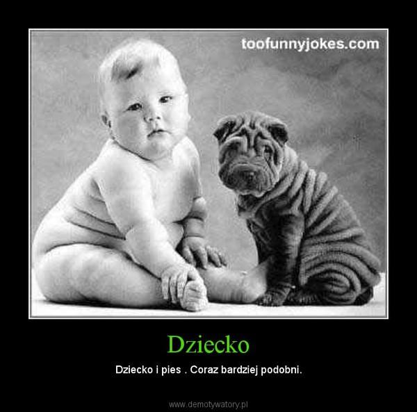 Dziecko – Dziecko i pies . Coraz bardziej podobni.