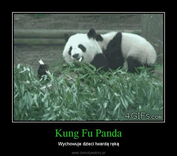 Kung Fu Panda – Wychowuje dzieci twardą ręką