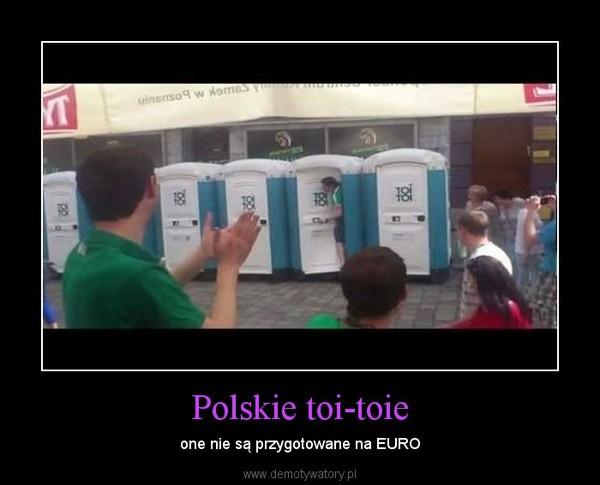 Polskie toi-toie – one nie są przygotowane na EURO