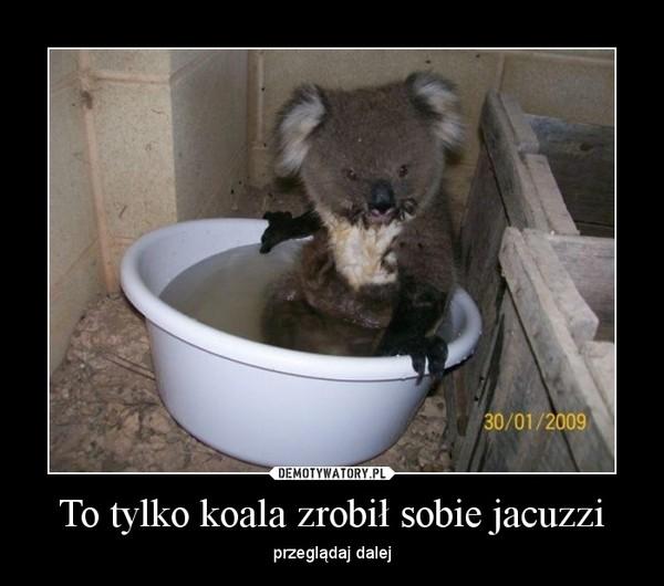 To tylko koala zrobił sobie jacuzzi – przeglądaj dalej