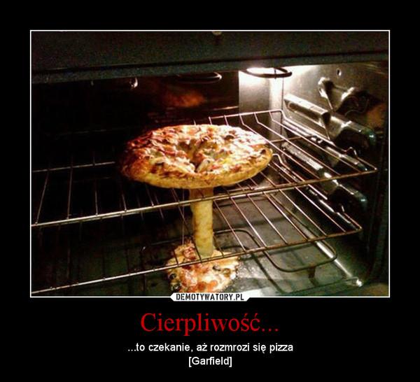 Cierpliwość... – ...to czekanie, aż rozmrozi się pizza[Garfield]