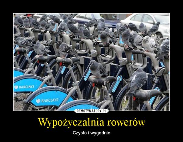 Wypożyczalnia rowerów – Czysto i wygodnie