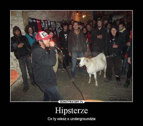 Hipsterze