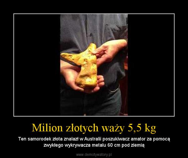 Milion złotych waży 5,5 kg – Ten samorodek złota znalazł w Australii poszukiwacz amator za pomocą zwykłego wykrywacza metalu 60 cm pod ziemią