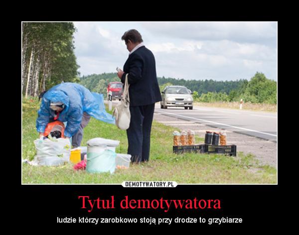 Tytuł demotywatora – ludzie którzy zarobkowo stoją przy drodze to grzybiarze