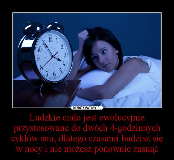 Ludzkie ciało jest ewolucyjnie przystosowane do dwóch 4-godzinnych cyklów snu, dlatego czasami budzisz się w nocy i nie możesz ponownie zasnąć –