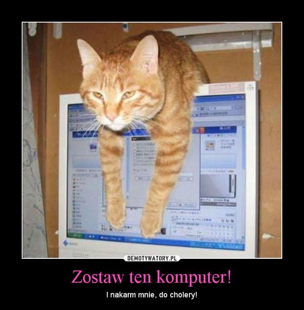 Zostaw ten komputer! – I nakarm mnie, do cholery!