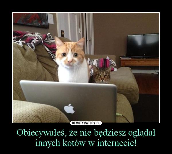 Obiecywałeś, że nie będziesz oglądał innych kotów w internecie! –