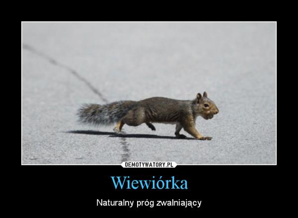 Wiewiórka – Naturalny próg zwalniający