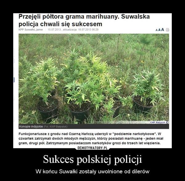 Sukces polskiej policji – W końcu Suwałki zostały uwolnione od dilerów