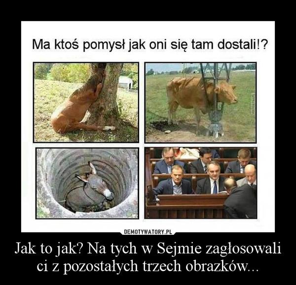 Jak to jak? Na tych w Sejmie zagłosowali ci z pozostałych trzech obrazków... –