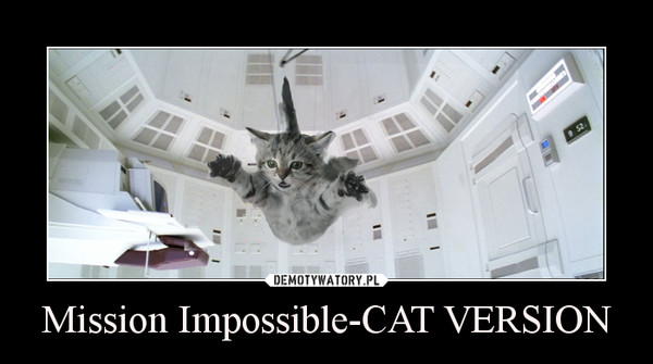 Mission Impossible-CAT VERSION –
