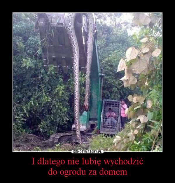 I dlatego nie lubię wychodzićdo ogrodu za domem –