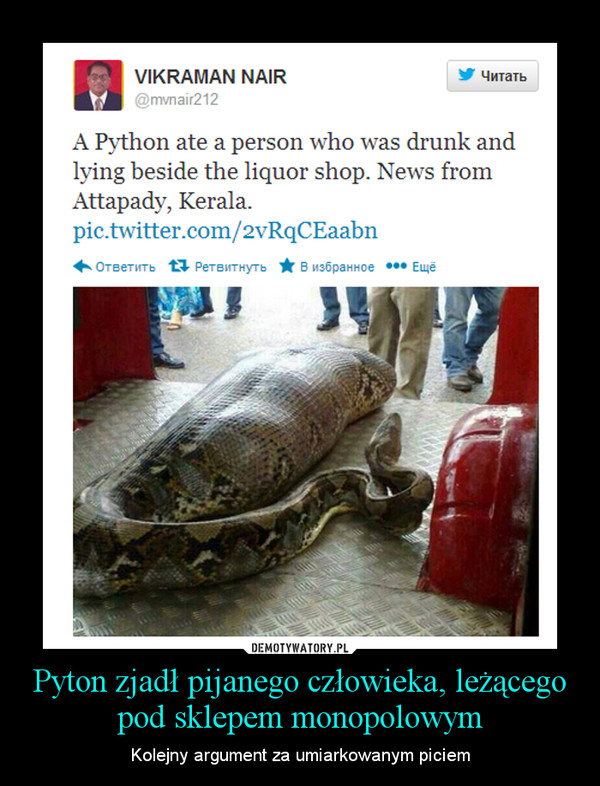 Pyton zjadł pijanego człowieka, leżącego pod sklepem monopolowym – Kolejny argument za umiarkowanym piciem