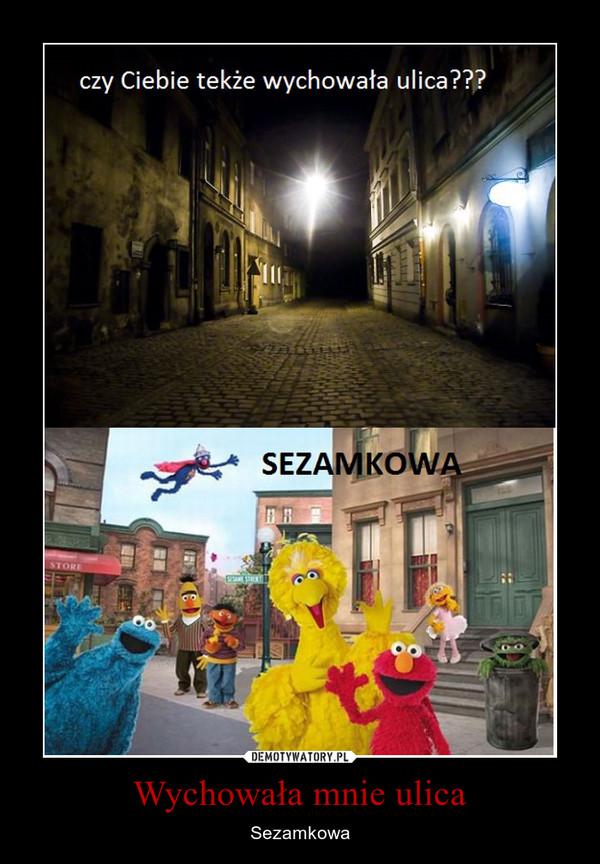 Wychowała mnie ulica – Sezamkowa