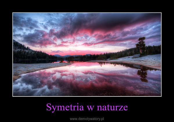 Symetria w naturze –