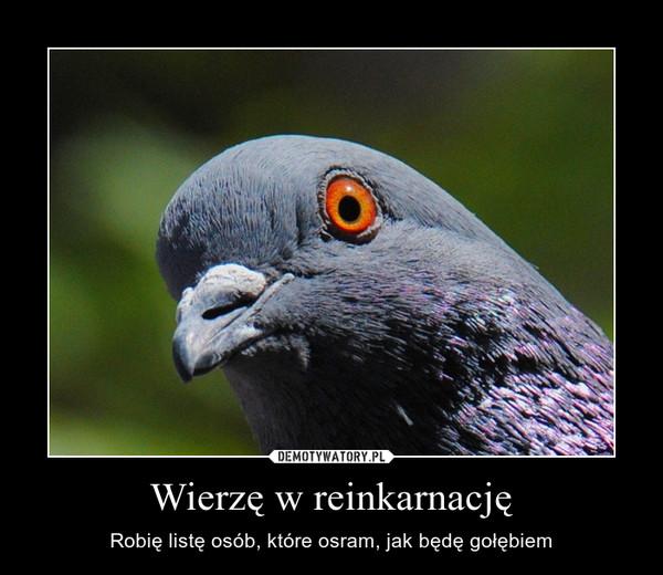 Wierzę w reinkarnację – Robię listę osób, które osram, jak będę gołębiem