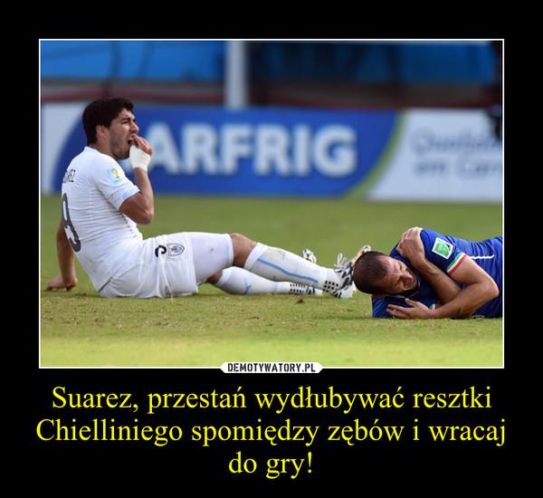 Suarez, przestań wydłubywać resztki Chielliniego spomiędzy zębów i wracaj do gry! –