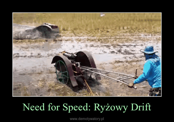 Need for Speed: Ryżowy Drift –