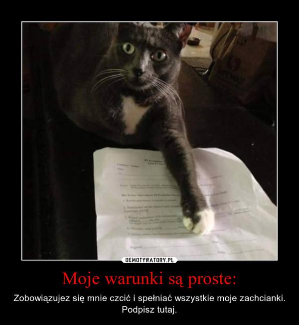 Moje warunki są proste: – Zobowiązujez się mnie czcić i spełniać wszystkie moje zachcianki.Podpisz tutaj.