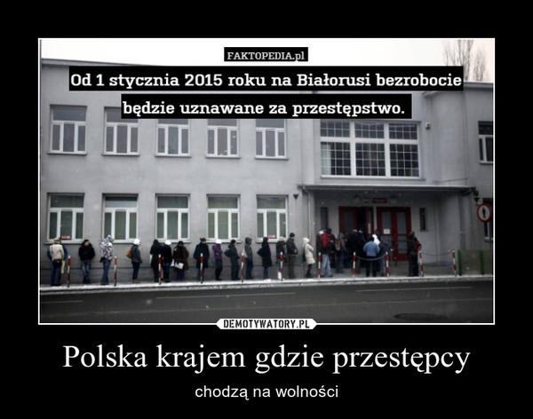 Polska krajem gdzie przestępcy – chodzą na wolności