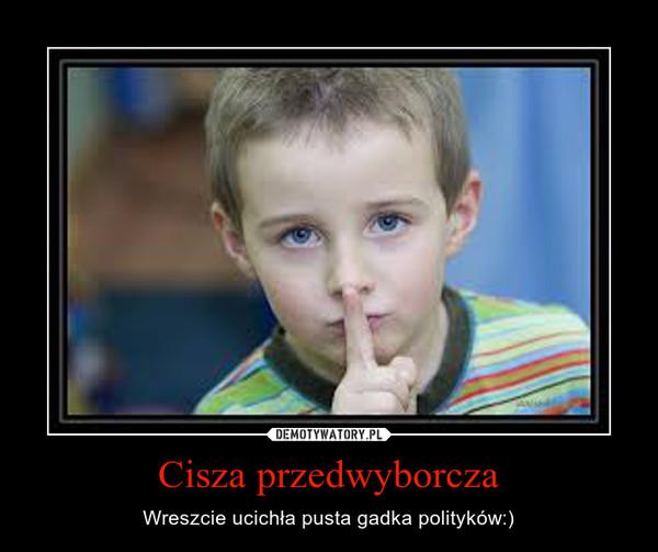 Cisza przedwyborcza – Wreszcie ucichła pusta gadka polityków:)