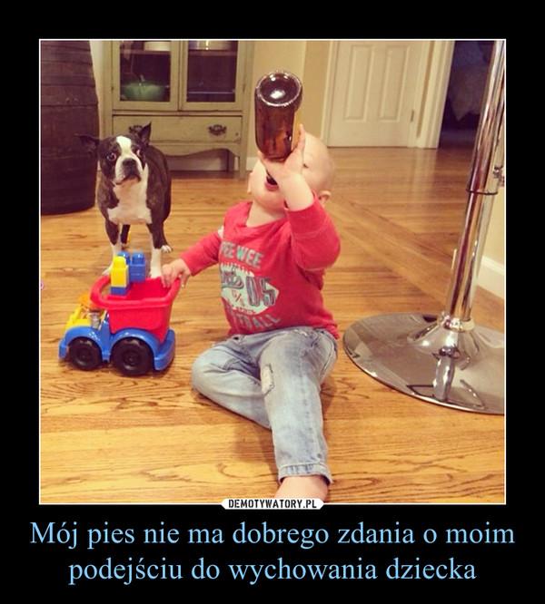 Mój pies nie ma dobrego zdania o moim podejściu do wychowania dziecka –