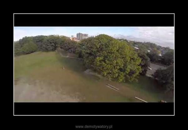 Jastrząb atakuje drona –