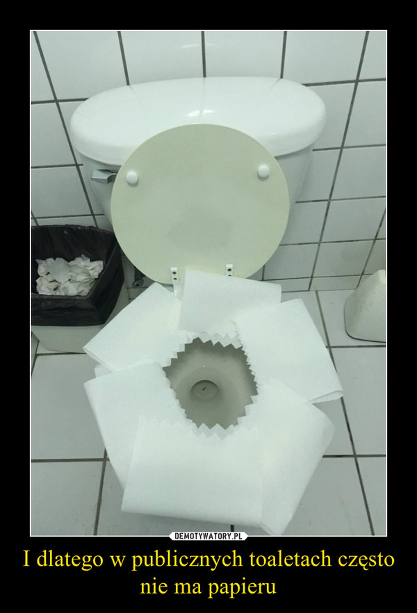 I dlatego w publicznych toaletach często nie ma papieru –