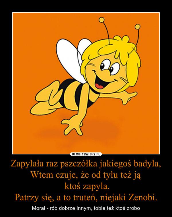 Zapylała raz pszczółka jakiegoś badyla,Wtem czuje, że od tyłu też ją ktoś zapyla.Patrzy się, a to truteń, niejaki Zenobi. – Morał - rób dobrze innym, tobie też ktoś zrobo