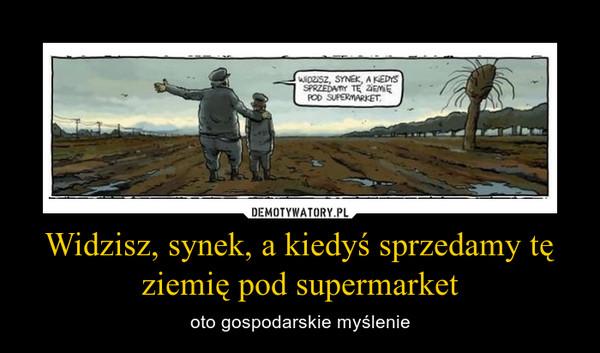 Widzisz, synek, a kiedyś sprzedamy tę ziemię pod supermarket – oto gospodarskie myślenie