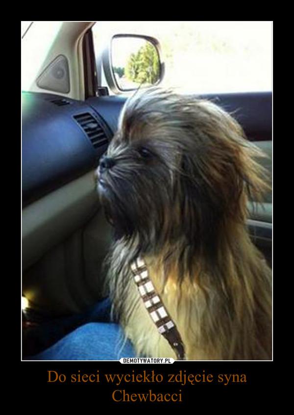Do sieci wyciekło zdjęcie syna Chewbacci –