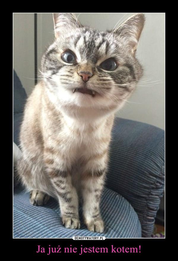 Ja już nie jestem kotem! –