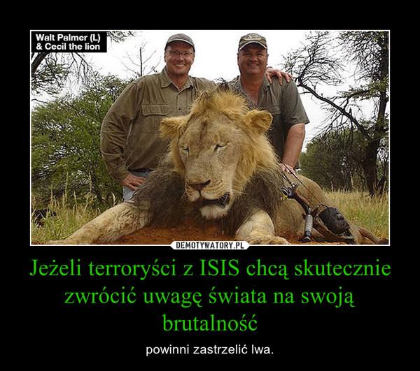 Jeżeli terroryści z ISIS chcą skutecznie zwrócić uwagę świata na swoją brutalność – powinni zastrzelić lwa.