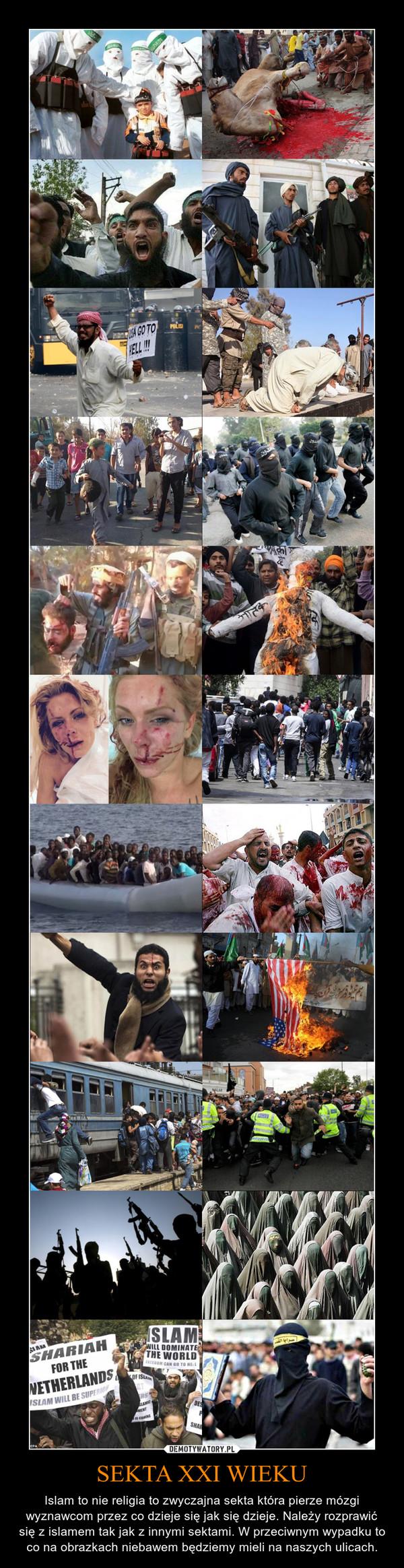 SEKTA XXI WIEKU – Islam to nie religia to zwyczajna sekta która pierze mózgi wyznawcom przez co dzieje się jak się dzieje. Należy rozprawić się z islamem tak jak z innymi sektami. W przeciwnym wypadku to co na obrazkach niebawem będziemy mieli na naszych ulicach.