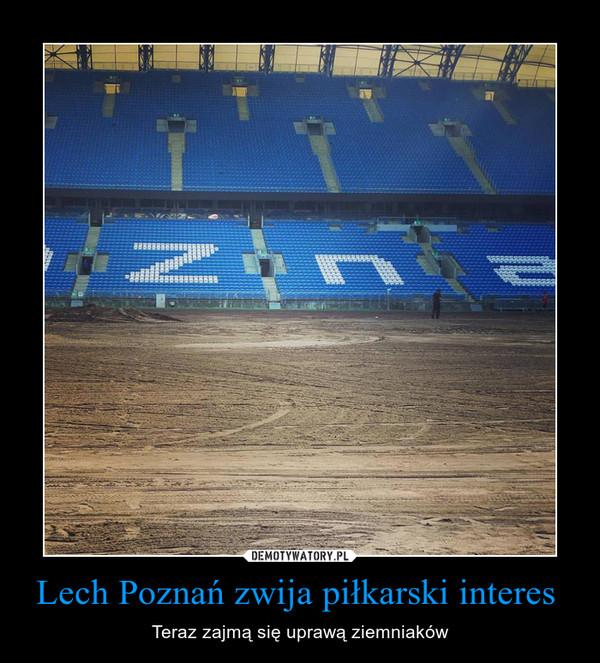 Lech Poznań zwija piłkarski interes  – Teraz zajmą się uprawą ziemniaków