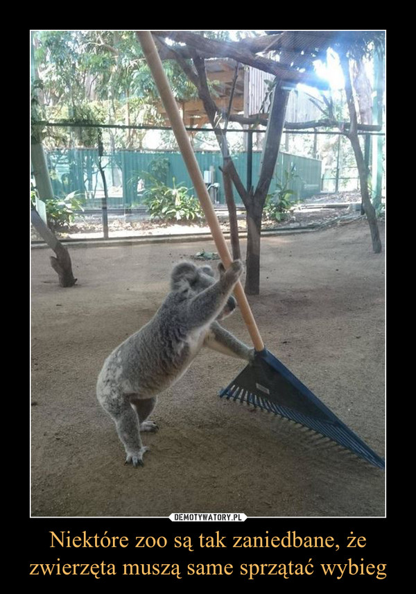 Niektóre zoo są tak zaniedbane, że zwierzęta muszą same sprzątać wybieg –