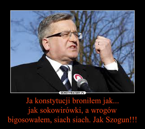Ja konstytucji broniłem jak...jak sokowirówki, a wrogów bigosowałem, siach siach. Jak Szogun!!! –