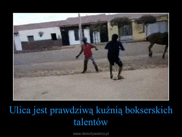 Ulica jest prawdziwą kuźnią bokserskich talentów –