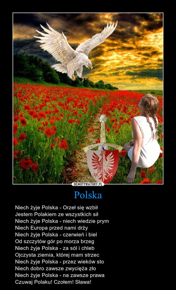 Polska – Niech żyje Polska - Orzeł się wzbiłJestem Polakiem ze wszystkich siłNiech żyje Polska - niech wiedzie prymNiech Europa przed nami drżyNiech żyje Polska - czerwień i bielOd szczytów gór po morza brzegNiech żyje Polska - za sól i chlebOjczysta ziemia, której mam strzecNiech żyje Polska - przez wieków stoNiech dobro zawsze zwycięża złoNiech żyje Polska - na zawsze prawaCzuwaj Polaku! Czołem! Sława!